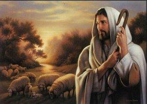 Jesús, Buena Pastor vino ...