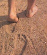 """""""No se llega a Dios con los zapatos limpios"""" (Beato Juan Bautista Scalabrini)."""