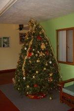 Compartimos con ustedes nuestro árbol de navidad.
