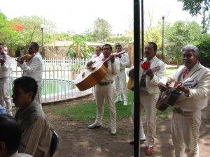 Los Mariachi animaron la comida ...
