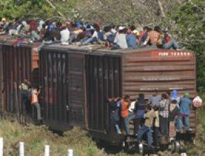 ... al servicio de  los Migrantes y Refugiados en el mundo.
