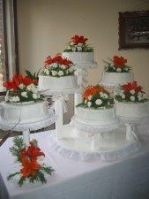 Y la Fiesta terminó con un rico pastel.